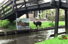 Giethoorn Netherlands قيثرون -هولندا